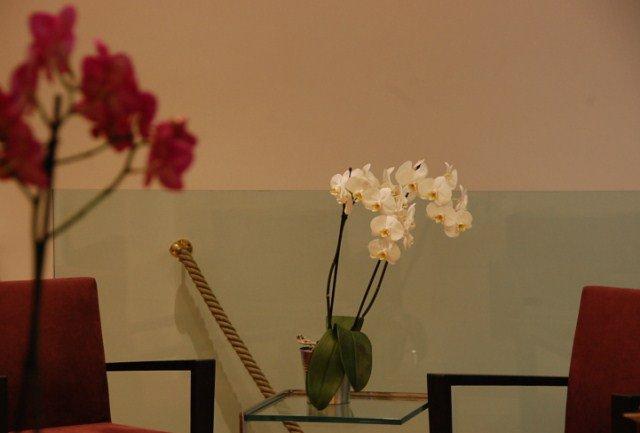 Salon de coiffure romuald creuzaud paris 17 for Salon de coiffure paris 9